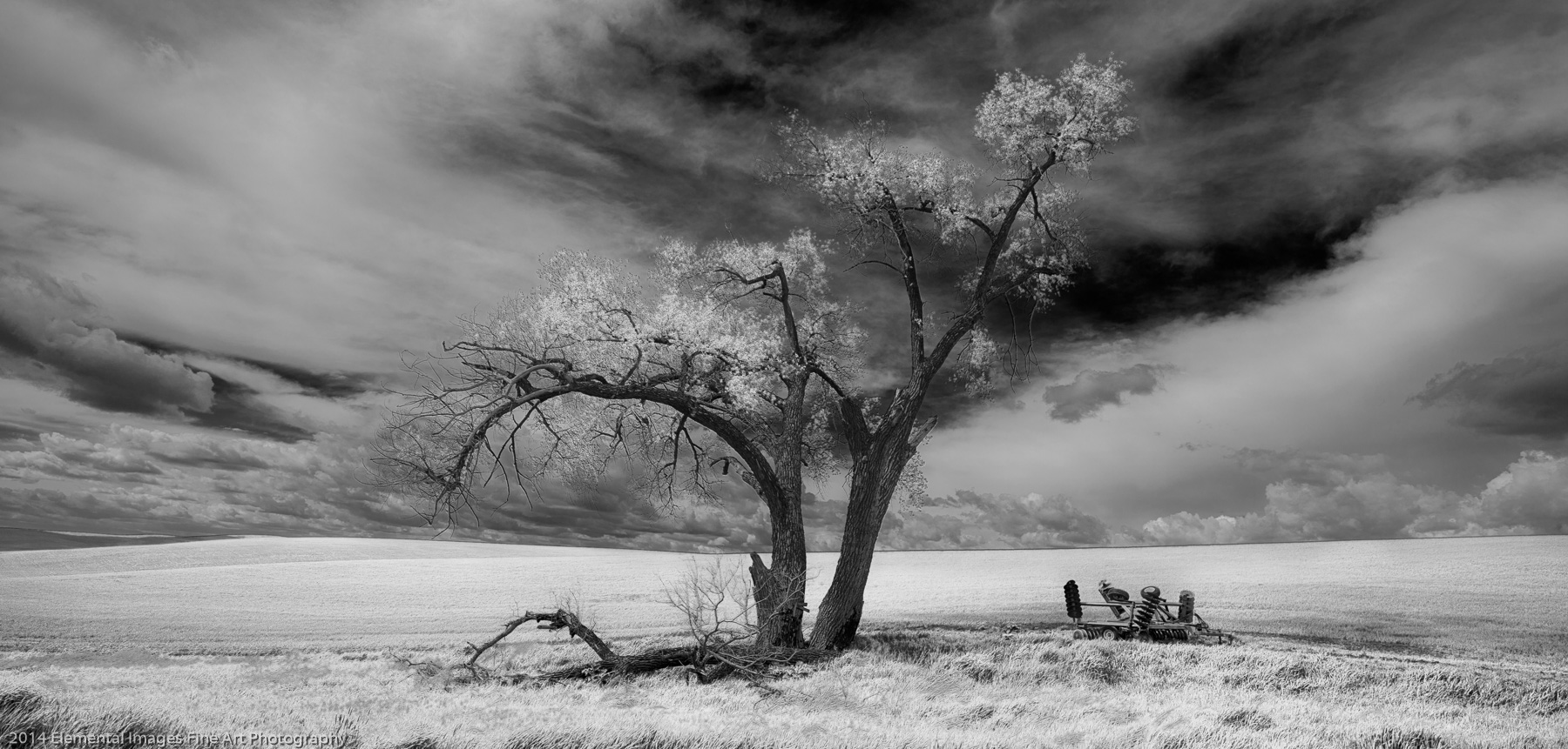 Lone Tree with Farm Equipment |  |  |  - © 2014 Elemental Images Fine Art Photography - All Rights Reserved Worldwide