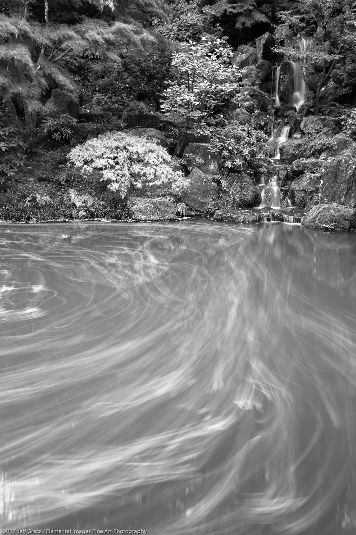 Garden Pond with Flowing Leaves | Portland | OR | USA - © 2017 Jeff Gracz / Elemental Images Fine Art Photography - All Rights Reserved Worldwide