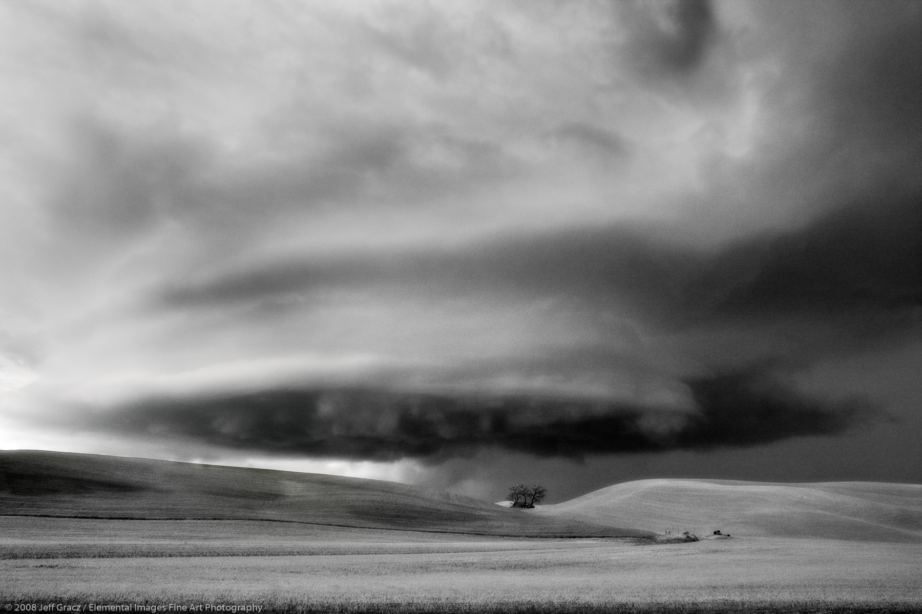 Wall cloud of thunderstorm with lone tree |  | WA | USA - © © 2008 Jeff Gracz / Elemental Images Fine Art Photography - All Rights Reserved Worldwide