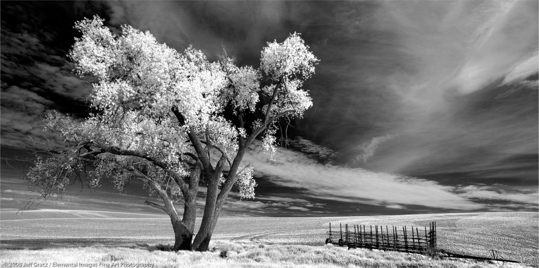 Lone Tree with Farm Machinery |  | WA | USA - © © 2008 Jeff Gracz / Elemental Images Fine Art Photography - All Rights Reserved Worldwide