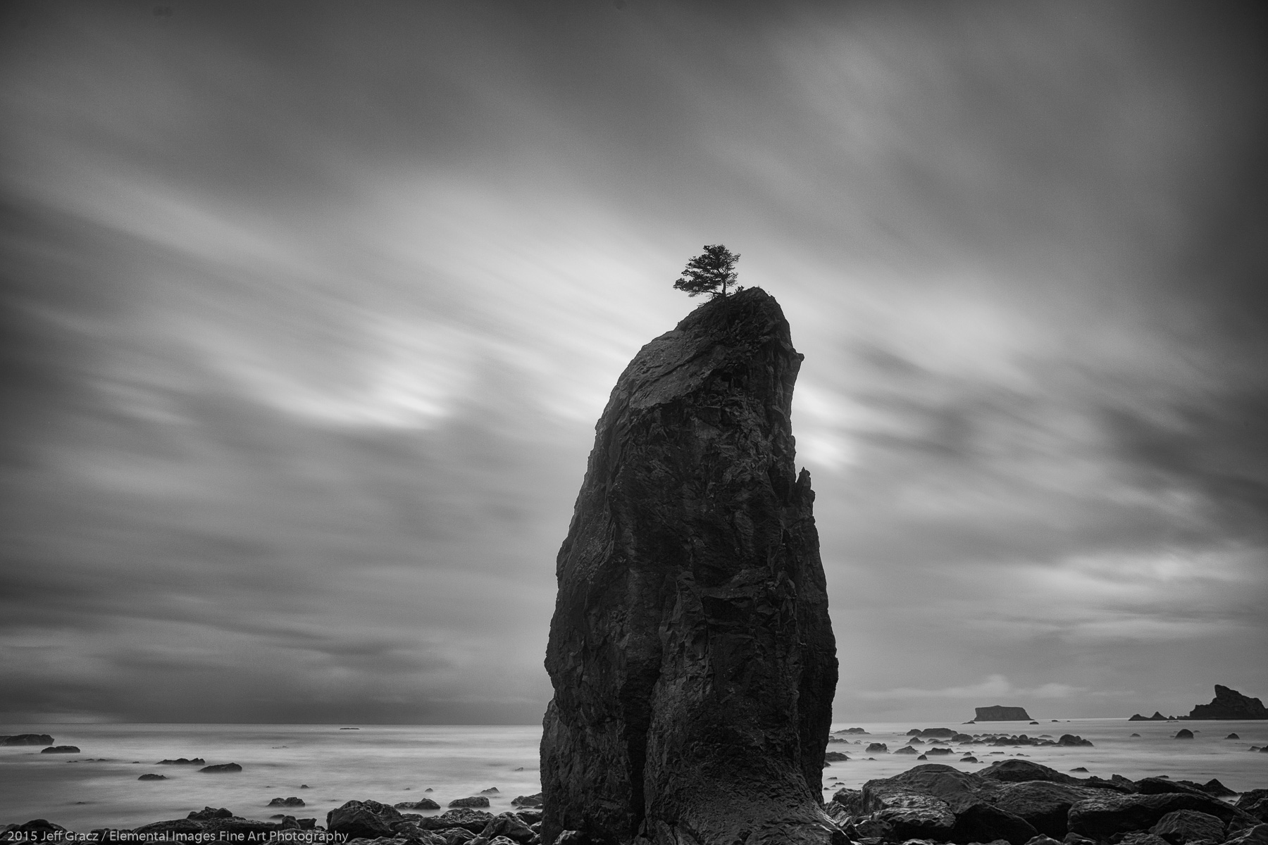 Lone tree with sea stack   Olympic National Park   WA   USA - © 2015 Jeff Gracz / Elemental Images Fine Art Photography - All Rights Reserved Worldwide
