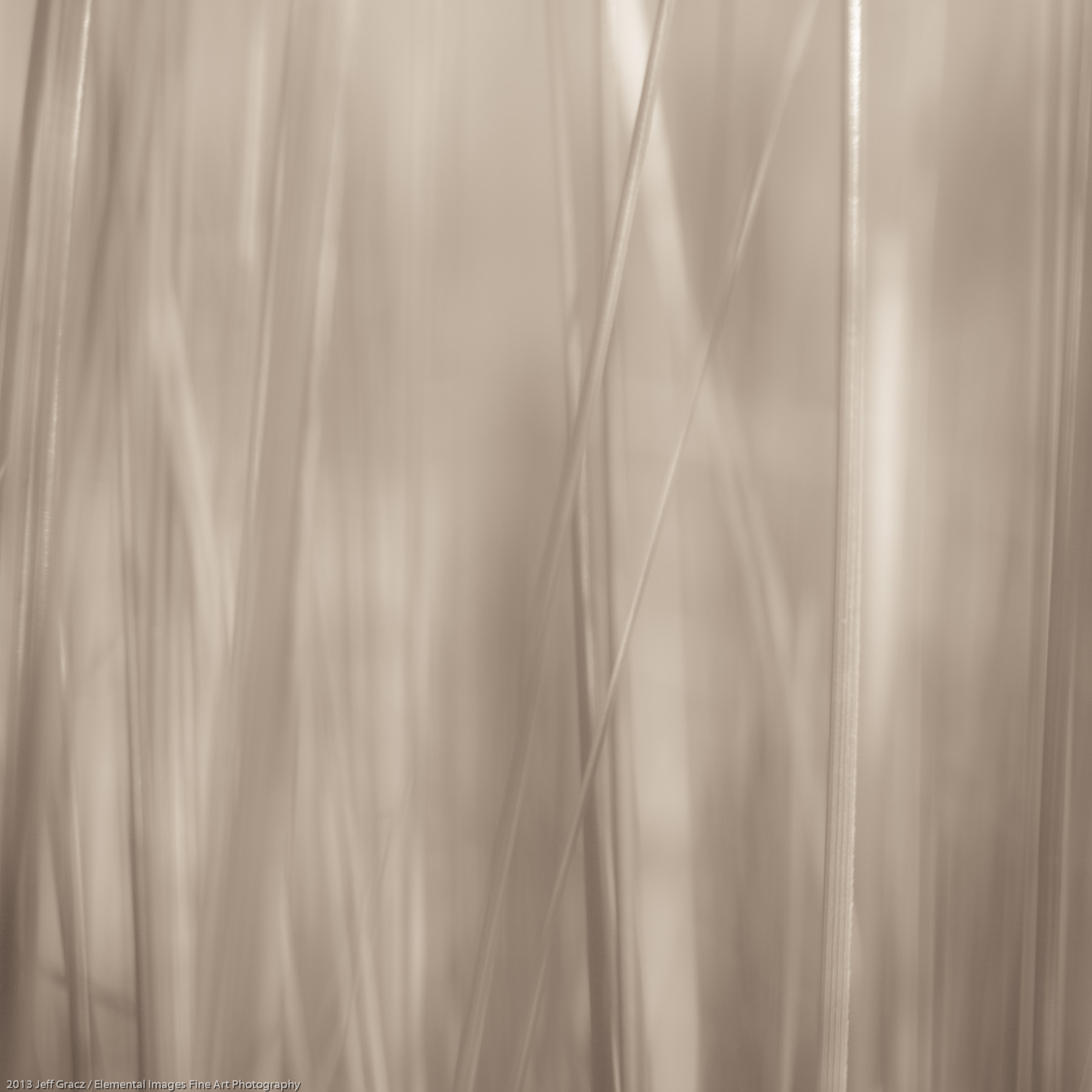 Grasses LIV | Portland | OR | USA - © 2013 Jeff Gracz / Elemental Images Fine Art Photography - All Rights Reserved Worldwide