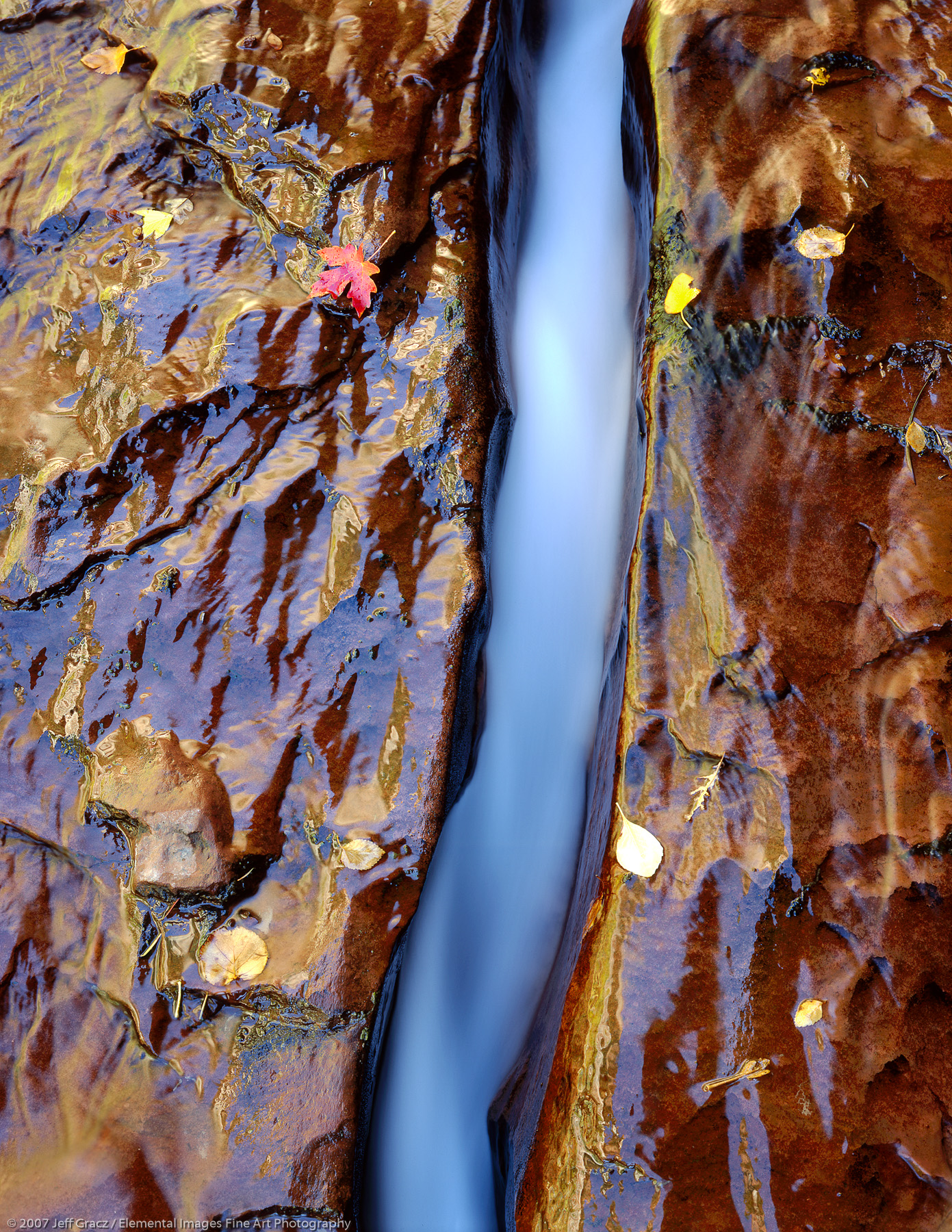 Liquid Color   Zion National Park   UT   USA - © © 2007 Jeff Gracz / Elemental Images Fine Art Photography - All Rights Reserved Worldwide