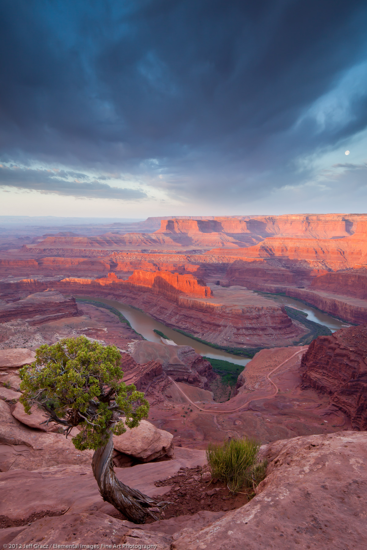 Canyon Sunrise | Dead Horse Point State Park | UT | USA - © © 2012 Jeff Gracz / Elemental Images Fine Art Photography - All Rights Reserved Worldwide