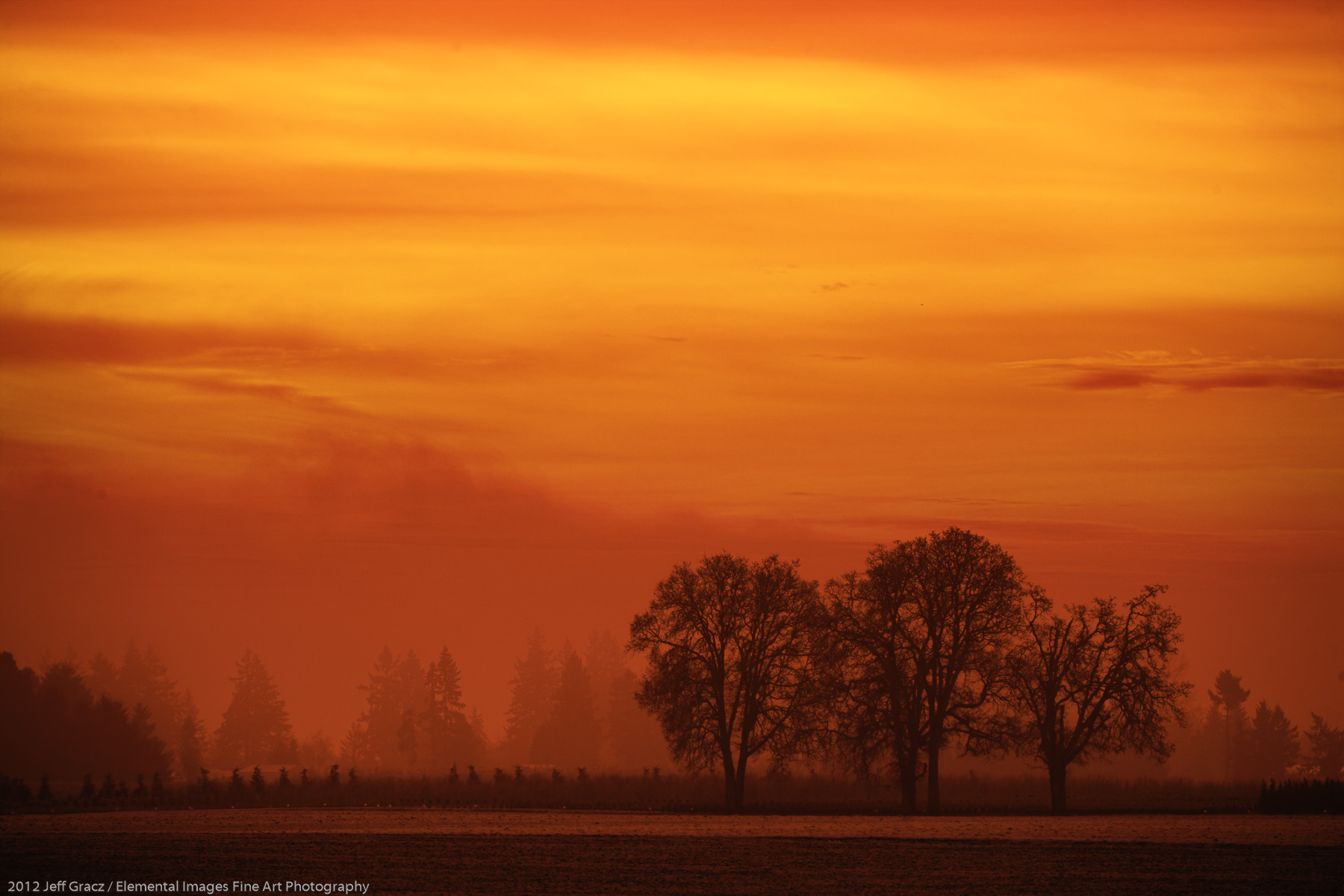 Fog, Sunrise, Willamette Valley | Butteville | OR | USA - © 2012 Jeff Gracz / Elemental Images Fine Art Photography - All Rights Reserved Worldwide