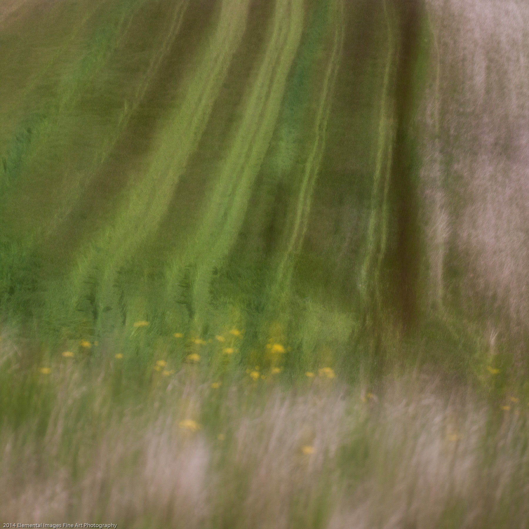Palouse LXV | The Palouse | WA | USA - © 2014 Elemental Images Fine Art Photography - All Rights Reserved Worldwide