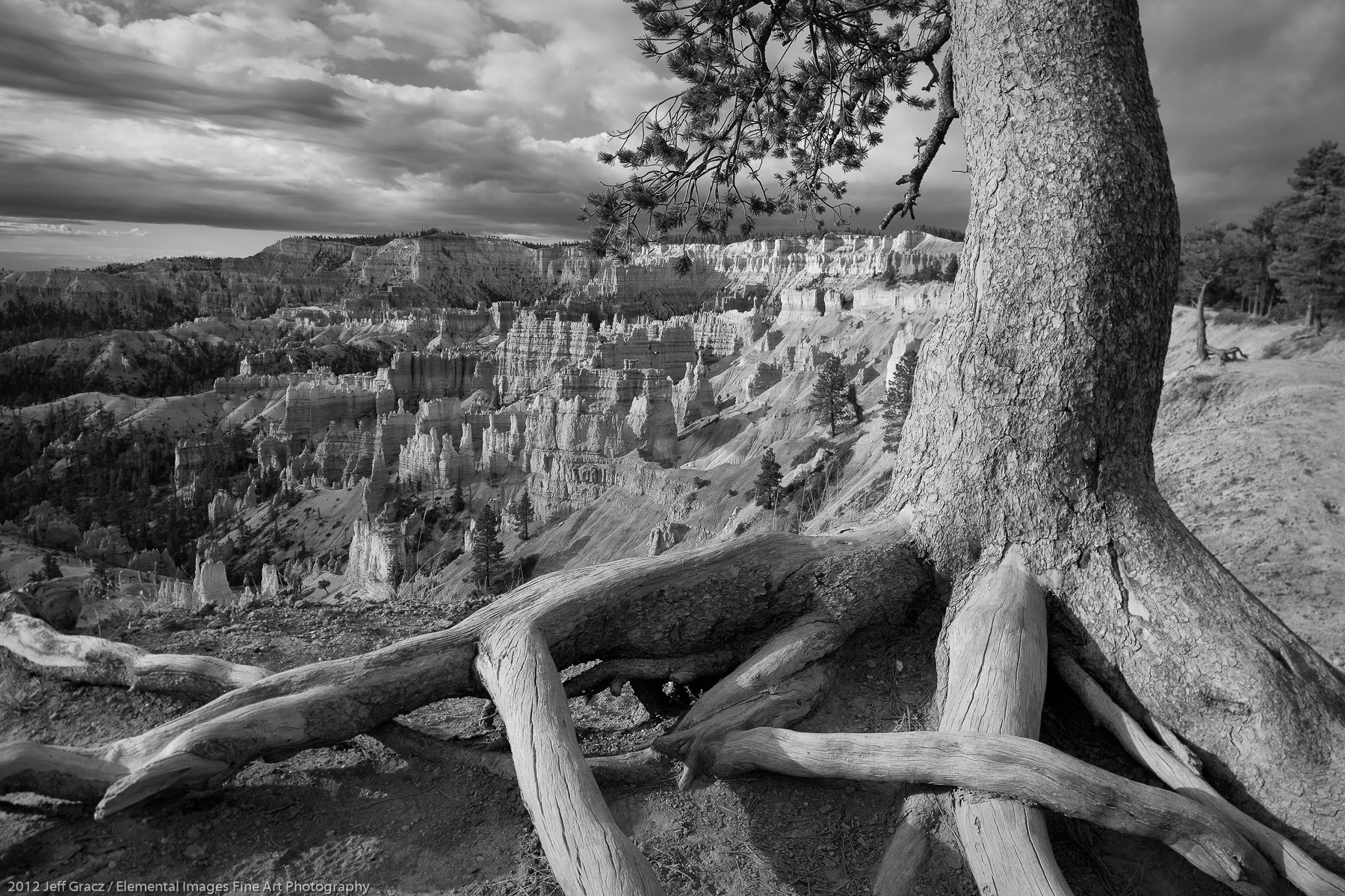 View from Bryce Canyon Rim III | Bryce Canyon National Park |  | USA - © 2012 Jeff Gracz / Elemental Images Fine Art Photography - All Rights Reserved Worldwide